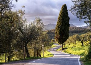 Scenic road in Forci, Lucca