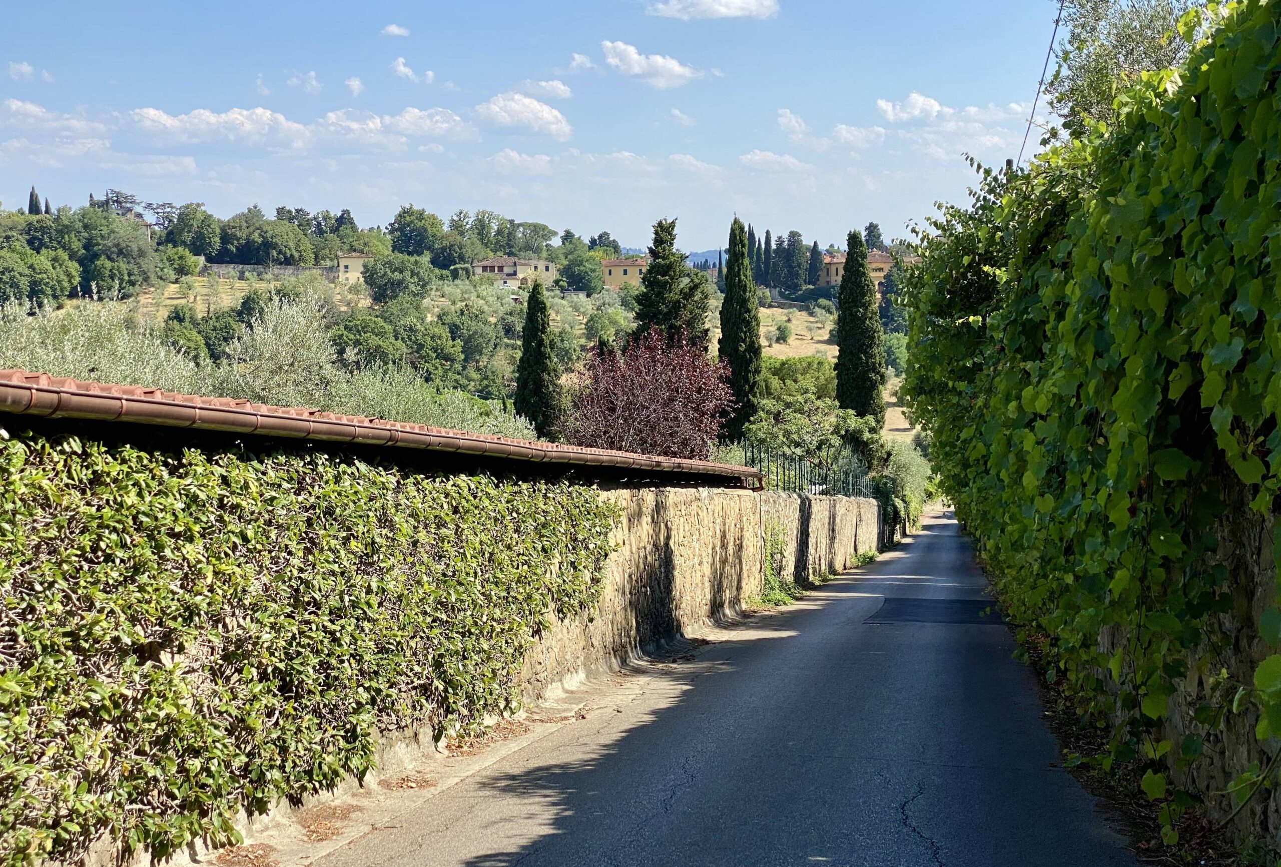 Cycling_Florence_Foothills